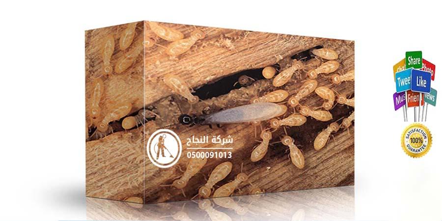 شركة مكافحة النمل الابيض بالرس