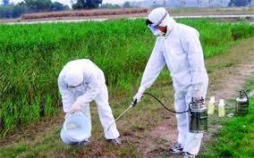 شركات رش المبيدات الحشرية بالرياض